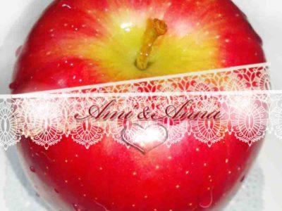 赤いりんごとレースの合成画像