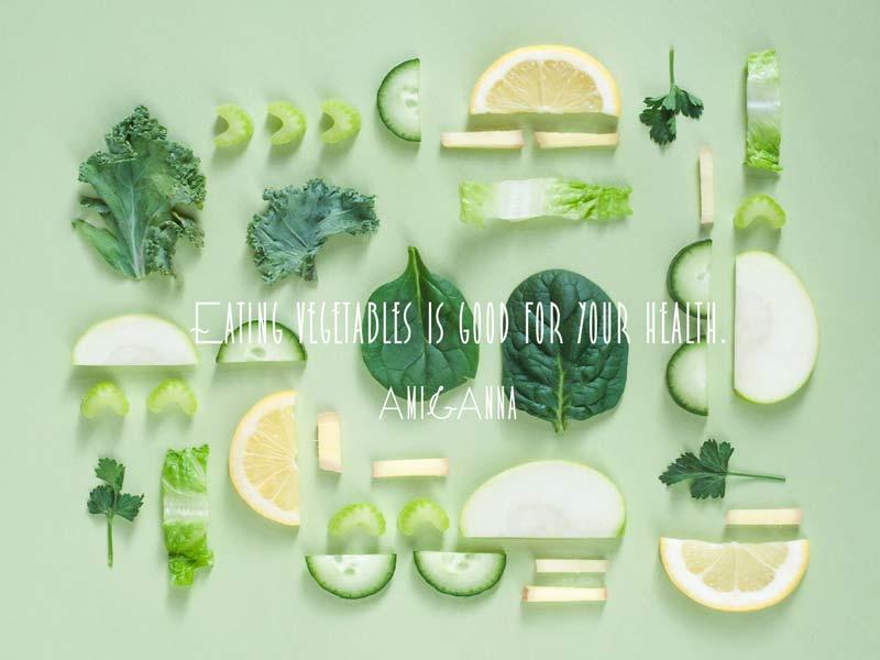 季節野菜のプレート