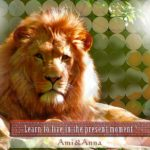 美しく威厳のある雄ライオン