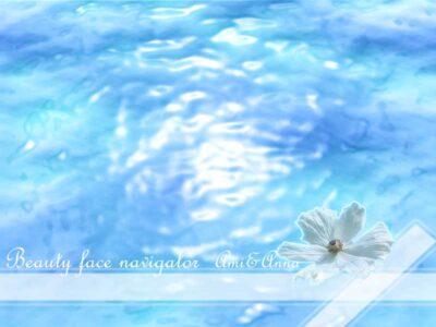 海と花のグラフィック画像