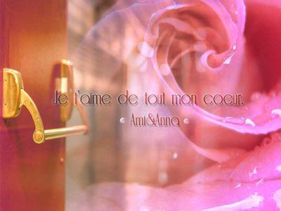 濡れたピンクのバラと赤い扉のグラフィック画像