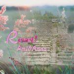 石段と花の合成画像
