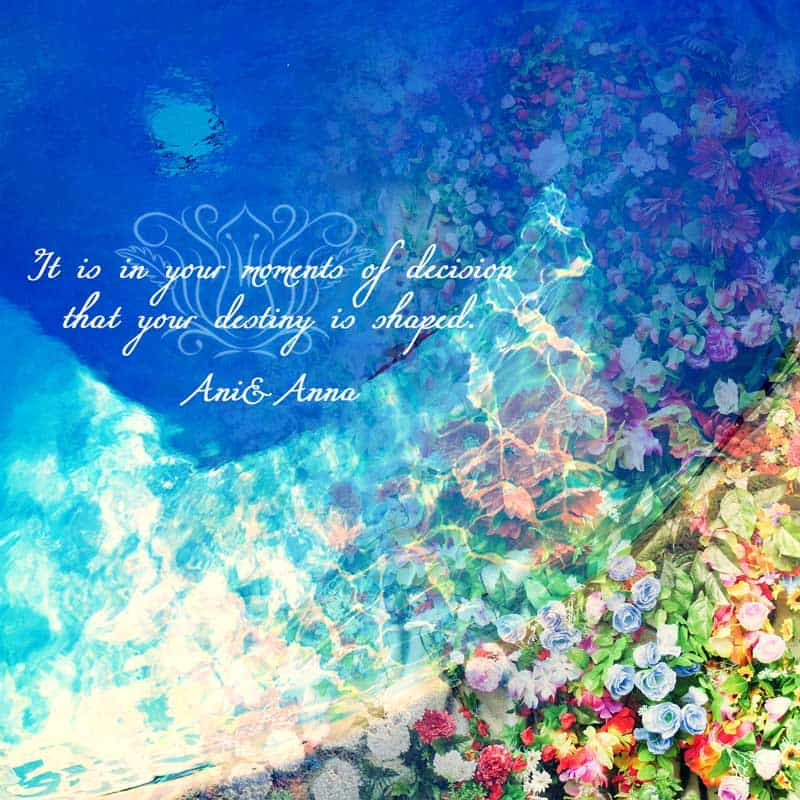 プールと花の合成画像
