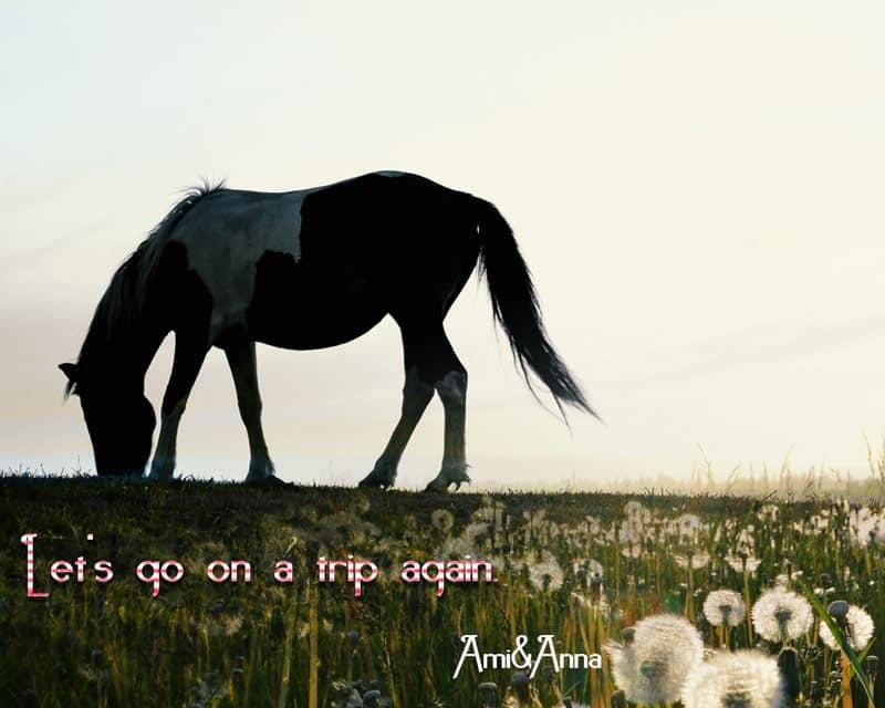 茶色と白のまだら模様の馬とタンポポ