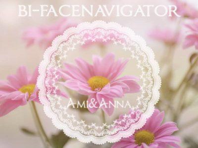 ピンクの花と白いレース