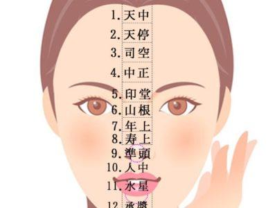 顔の十三部位一覧表