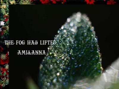 葉一面についた露の玉