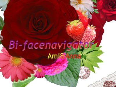 赤いバラと花のグラフィック画像