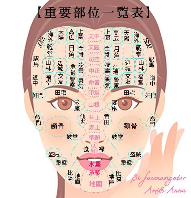顔の重要部位一覧表
