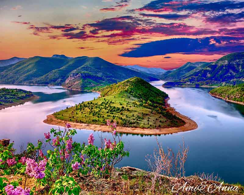 花と緑の島