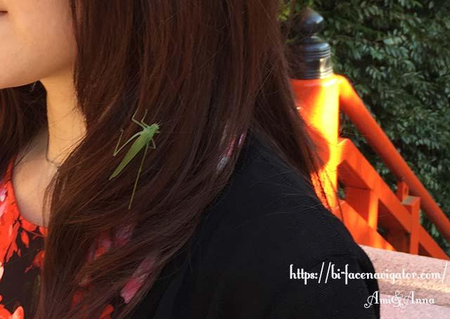 Amiの髪の毛にくっついている緑のバッタ(ツユムシ)