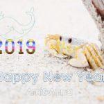 白い蟹と砂浜