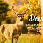 鹿と黄金色の草原のグラフィック画像