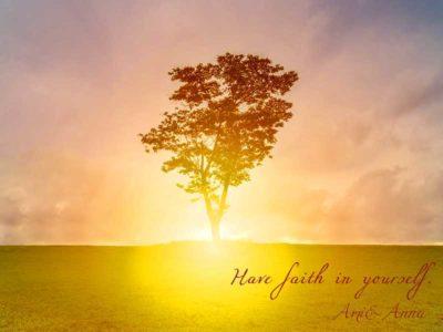 光に照らされている1本の木