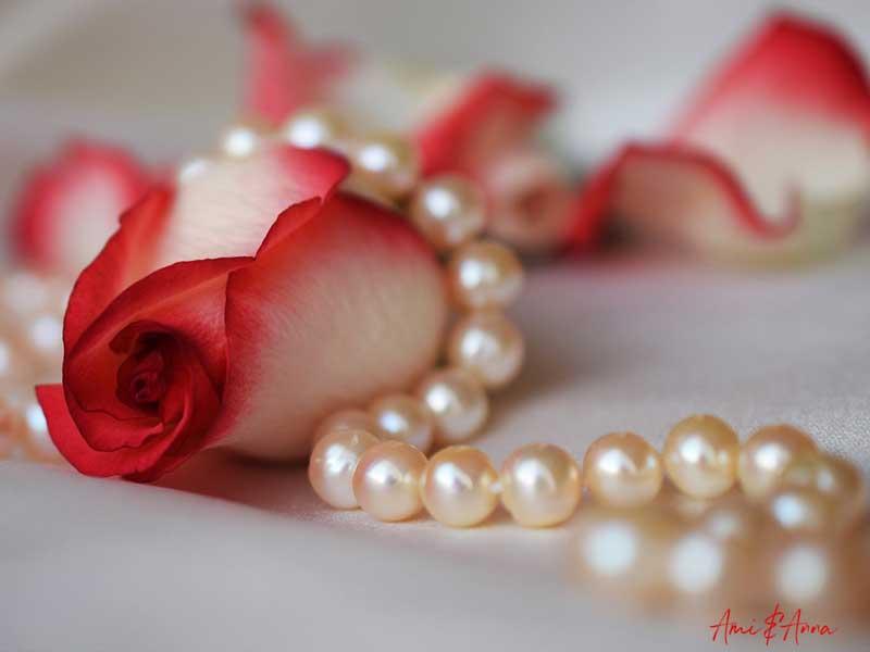 真珠のネックレスと赤い薔薇の花