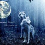 2匹の狼と月のグラフィック画像